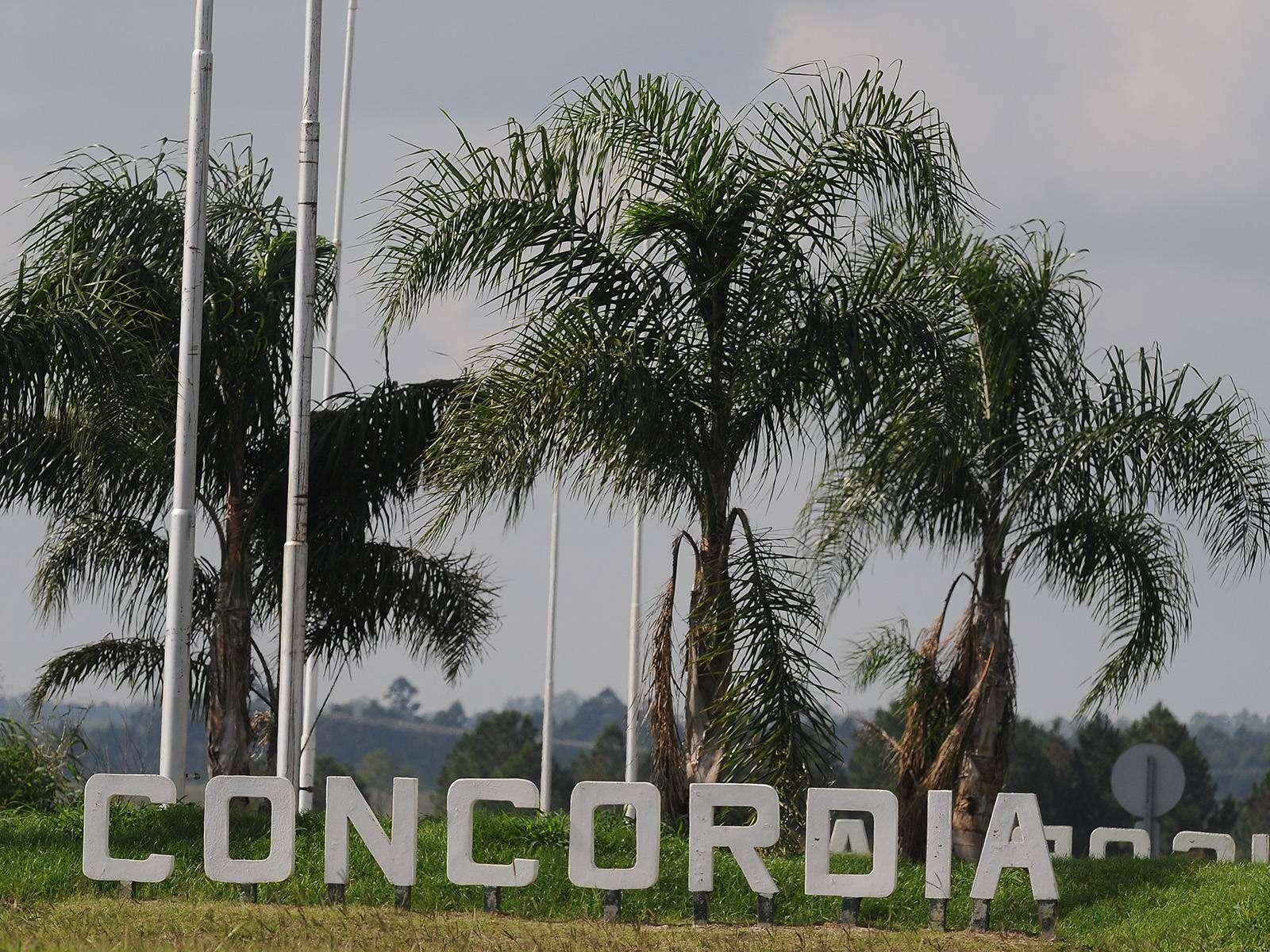 Comienza la promo #TNenConcordia